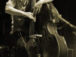 Back1_bass