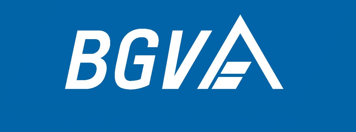 BGV-Logo_Pantone_2945